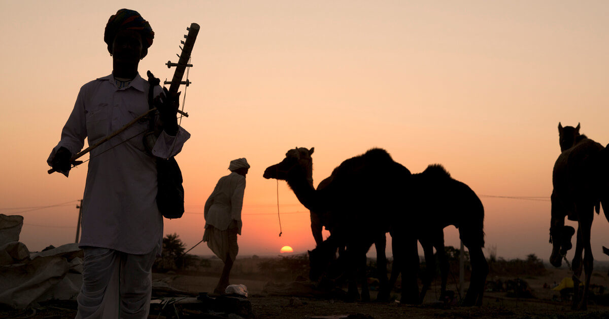 Sunset At The Pushkar Fair-Pushkar Camel Fair