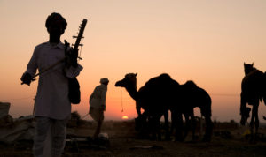 Sunset At The Pushkar Fair